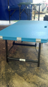 Dog Show Ramp - Conformation Show Ramp Table
